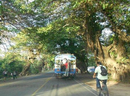 Los buses en Nicaragua dan miedo.  Foto cortesía del Macho Ratón.
