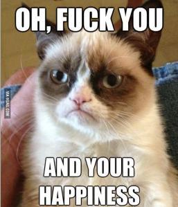 Grumpy Cat lo dice todo